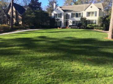 Suwanee & Gwinnett County, GA Landscaping Services Company